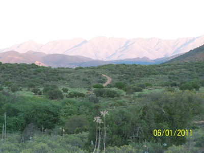 MEERKAT MANSION - THE MEERKAT MAGIC VALLEY RESERVE - ACCOMMODATION OUDTSHOORN WESTERN CAPE SOUTH AFRICA - The Meerkat Magic Conservation Project and The Meerkat Magic Valley Reserve is proudly located around Oudtshoorn, Western Cape of South Africa - guests can now stay with us at our Research base on site - The Meerkat Mansion!