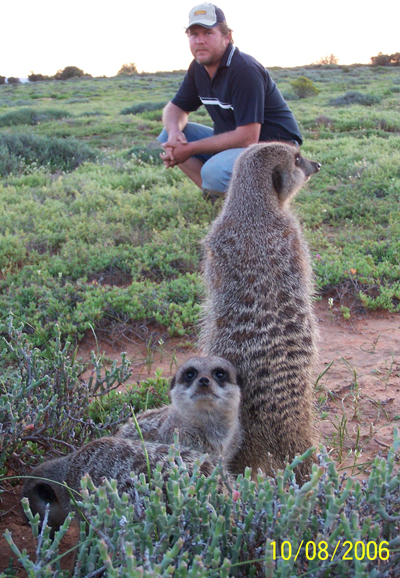 Francois Burger from Oudtshoorn, Western Cape, South Africa on a Sunset Tour with Ungulungu wild meerkats / suricates / meerkat / suricate group.
