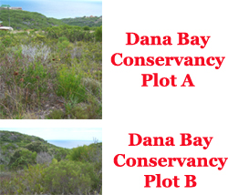 Investment opportunity in conservancy land, Dana Bay, Western Cape, South Africa.