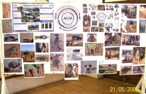 The Meerkat Magic Conservation Project Educational Presentation Display.